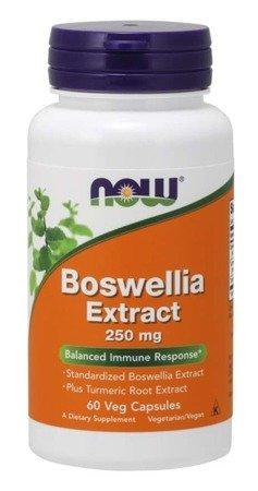 Now Foods Boswellia Extract 250 mg 60 kapsułek